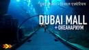ОАЭ Мега круто Гигантский аквариум в Дубай Молл The Dubai Mall