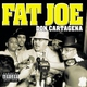 Fat Joe - Don Cartagena (feat. Diddy)