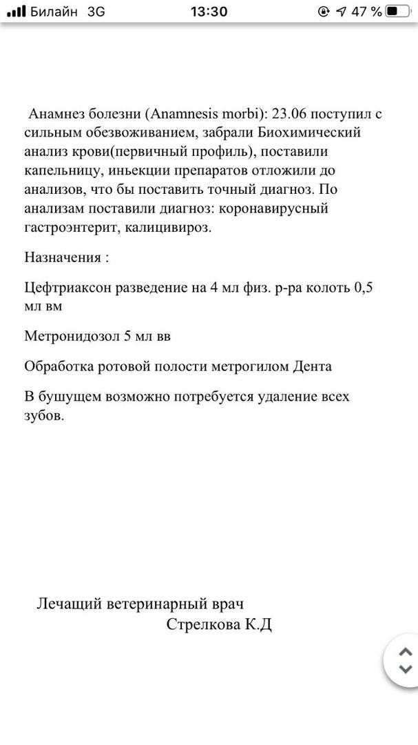 0m4xIcsnbdE.jpg