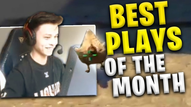 STEWIE2K BEST MOMENTS OF THE MONTH