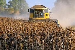 Рекордные урожаи масличных культур собрали аграрии региона