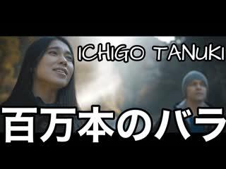 「日本語とロシア語」ICHIGO TANUKI - 百万本のバラ Ichigo Tanuki - Миллион Алых Роз