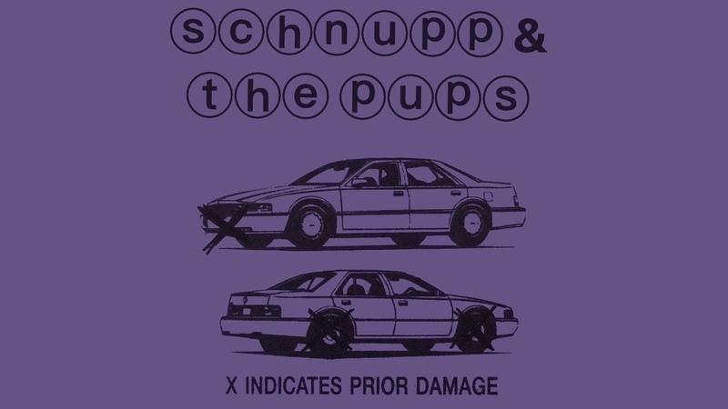Schnupp The Pups X Indicates Prior Damage