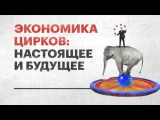 """""""ДЕНЬ"""". Экономика цирков: настоящее и будущее (2019)"""