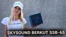 Динамики SKYSOUND BERKUT SSB-65 Новинка от SKYLOR - miss_spl