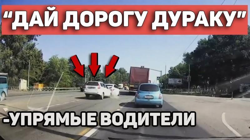 Автоподборка Дай дорогу дураку🚘Упрямые водители41