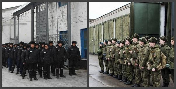 Чем армия похожа на тюрьму