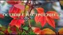 Осенние этюды. Vol.2 Ph: Айрат Шарипов