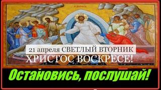 21 апреля  Вторник Светлая седмица Евангелие дня с толкованием Иконы Божией Матери Иверская