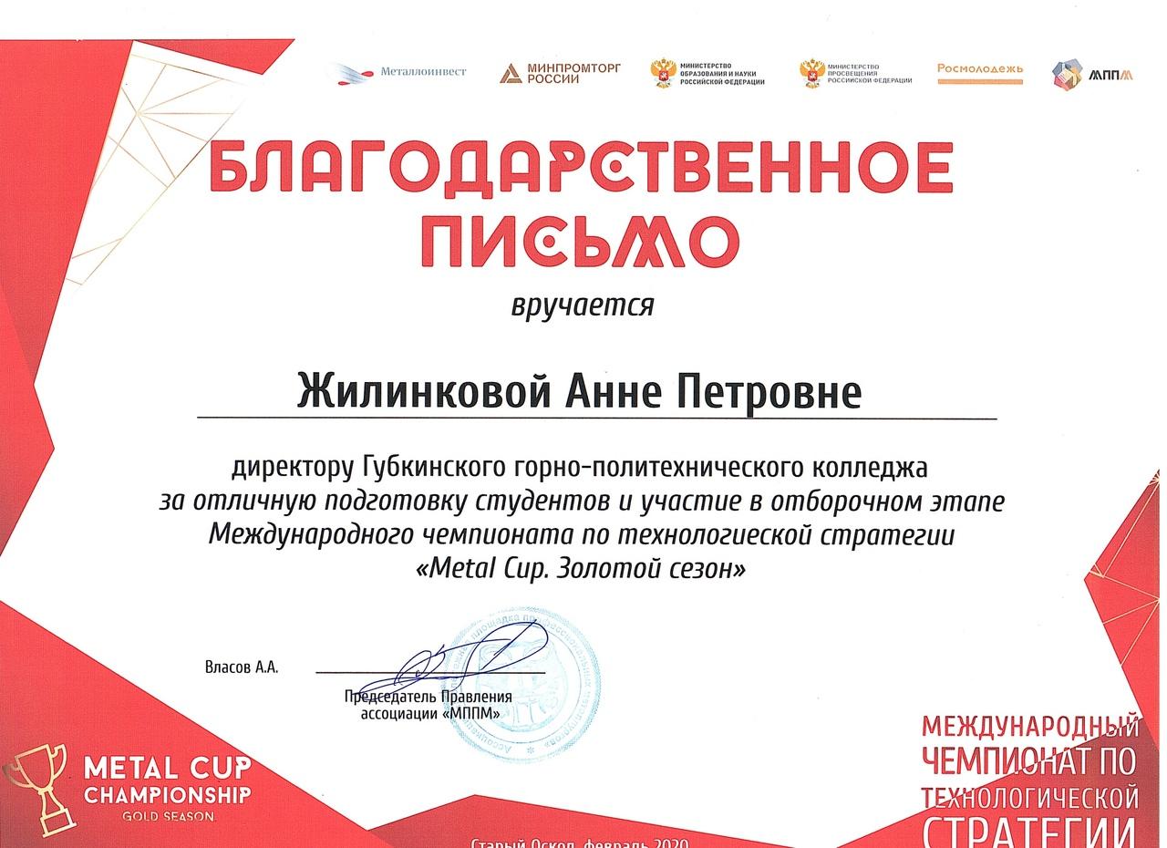 отборочный этап Международного чемпионата по технологической стратегии «Metal Cup»