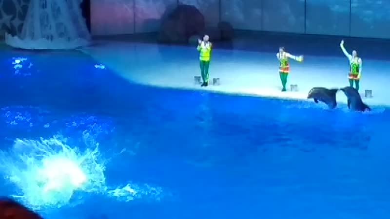 Мюзикл на воде Сон в летнюю ночь.