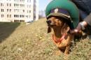 Личный фотоальбом Юрия Юрьева