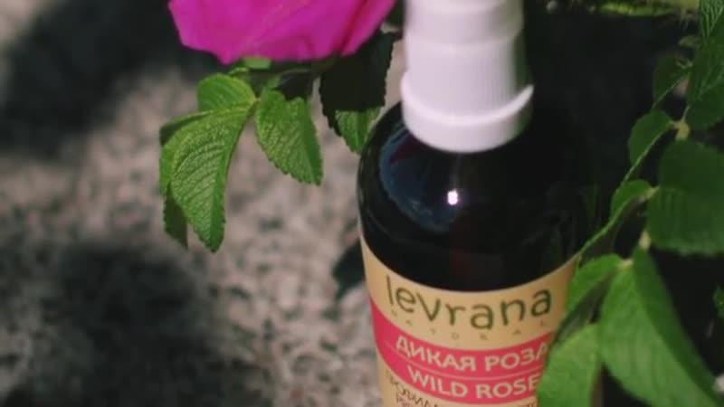 Масло для профилактики растяжек от Levrana Дикая роза