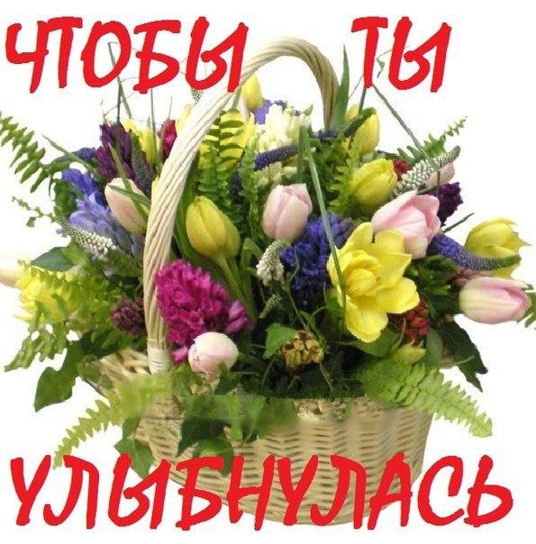 забраться открытка цветы для ксюши блоки получите
