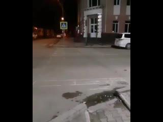 В Улан-Удэ появилась светящаяся зебра