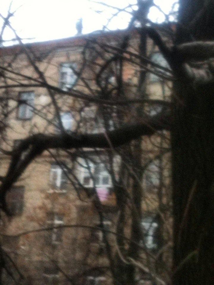 фото из альбома Павла Максимова №12