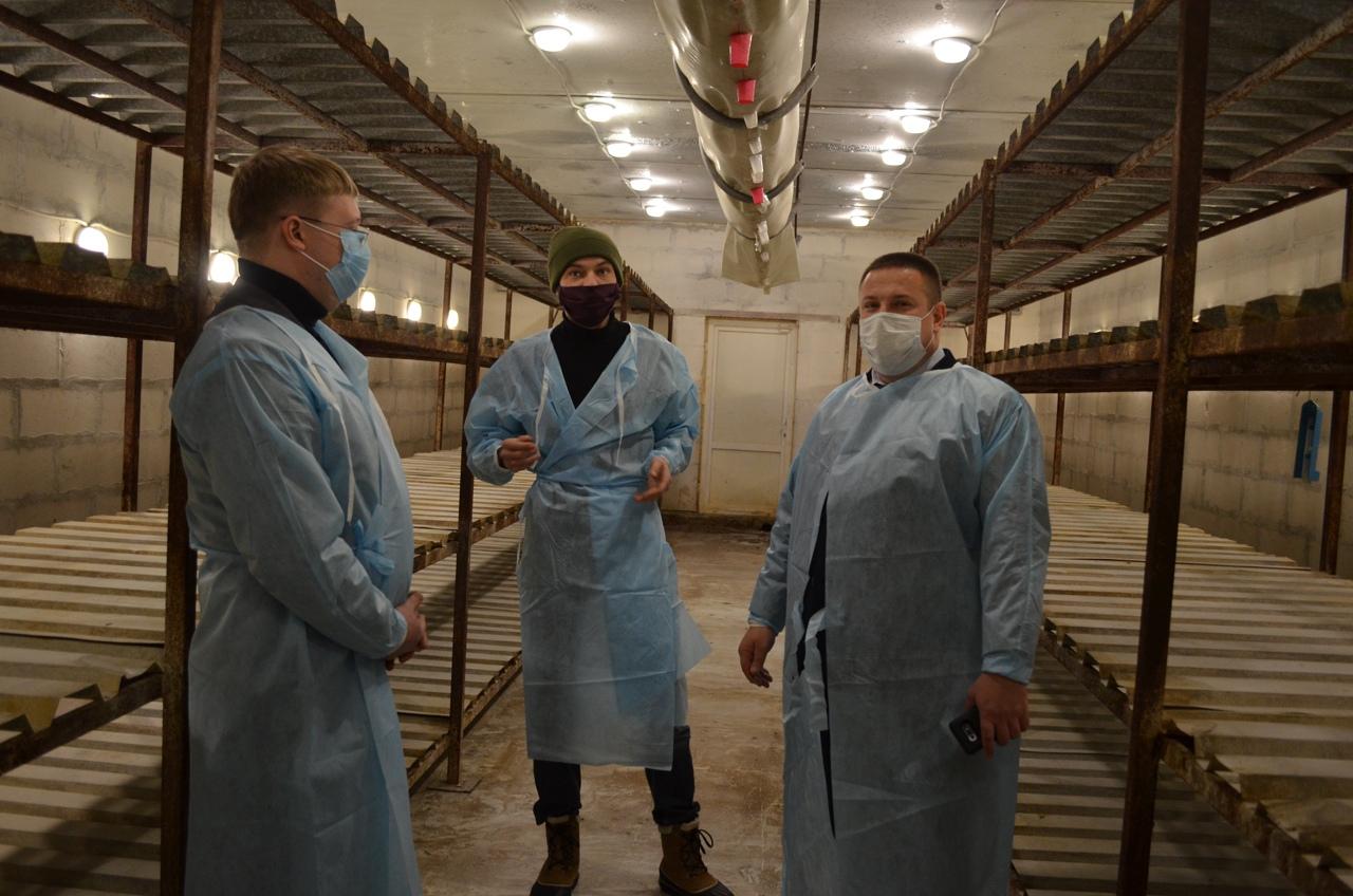 Региональный министр сельского хозяйства осмотрел производственные площадки грибного комбината «Петровский»