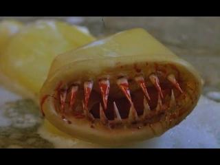 Презерватив убийца (1996) комедия ужасы