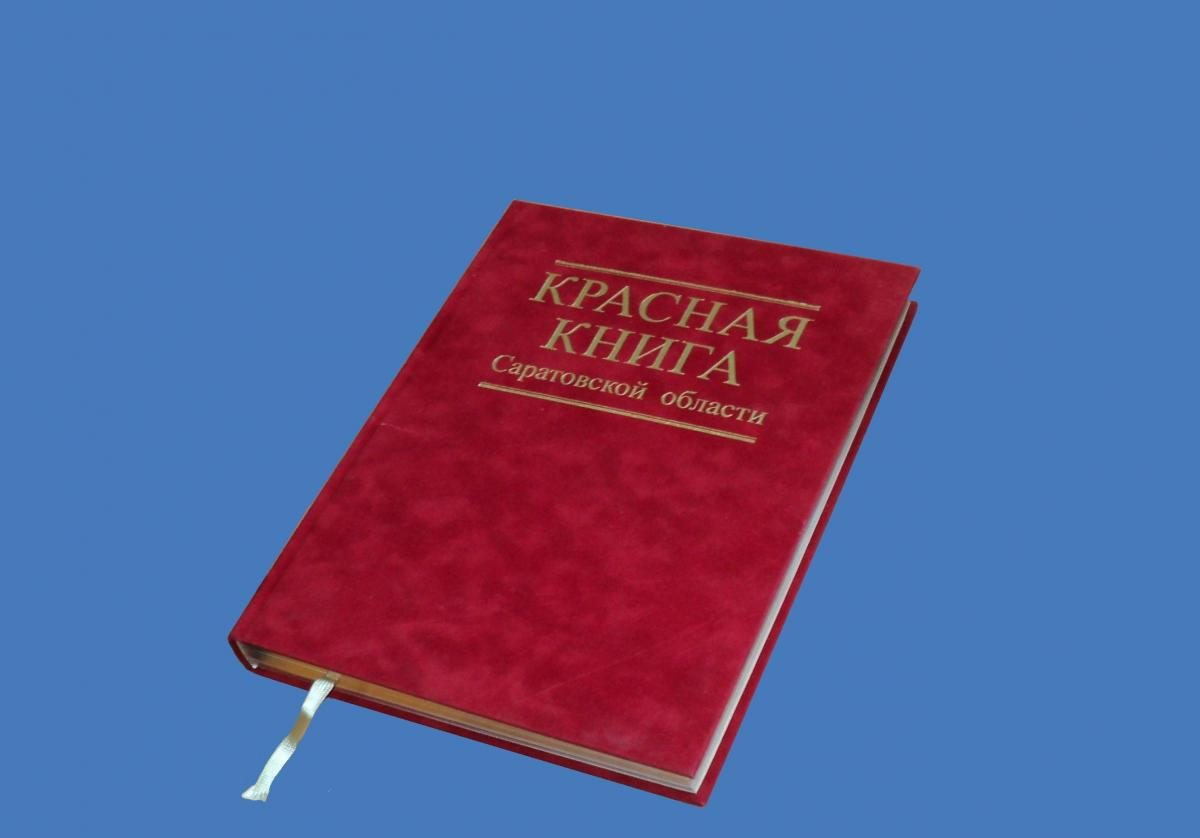 В этом году выйдет третье издание Красной книги Саратовской области