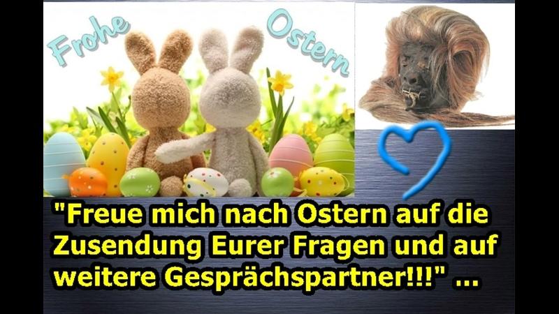 Freue mich nach Ostern auf die Zusendung Eurer Fragen und auf weitere Gesprächspartner ...