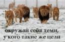 Фотоальбом Михаила Реброва