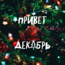 Полярный Александр |  | 35