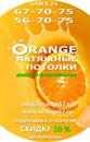 Персональный фотоальбом Светы Оранж