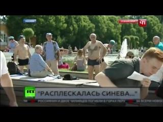 «Помолчите, пожалуйста»_ корреспондента НТВ ударили в прямом эфире во время празднования Дня ВДВ