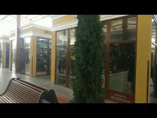 Помните кипешь ххлы подымали, мол акупанты сносят рынок в Ялте. Предприниматели бедные без работы остаются