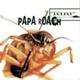 Papa Roach, Kayzo - Last Resort