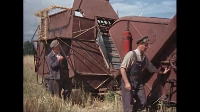 Гость с Кубани (комедия, реж. Андрей Фролов, 1955 г.)