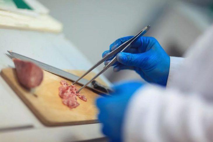 Таганрогская ветеринарная лаборатория успешно прошла МСИ