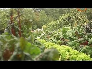 Лара Колдер: Блюда из сезонных продуктов. Сад и огород