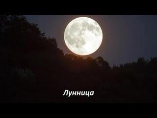 Конференция «Лунница» с Аленой Полынь (демо-версия)