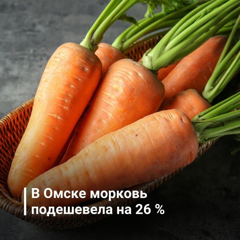 В Омске морковь подешевела на 26 % 🥕🥕🥕