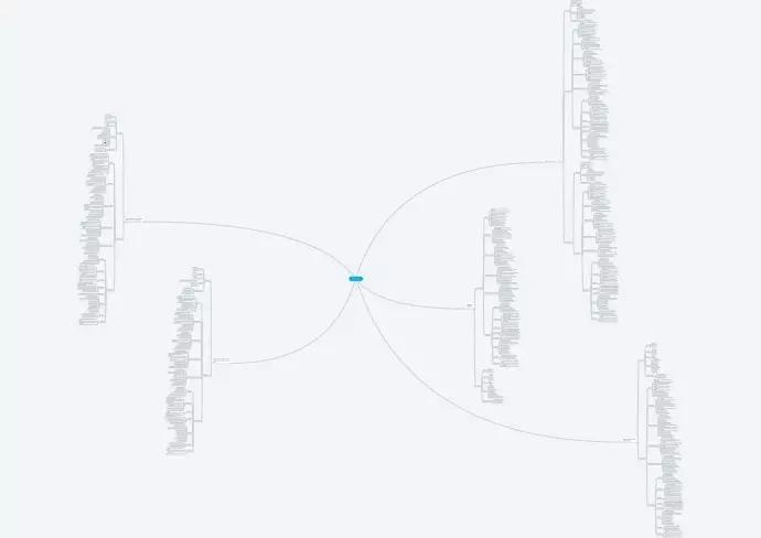 Пример mind карты с расписанными целевыми аудиториями