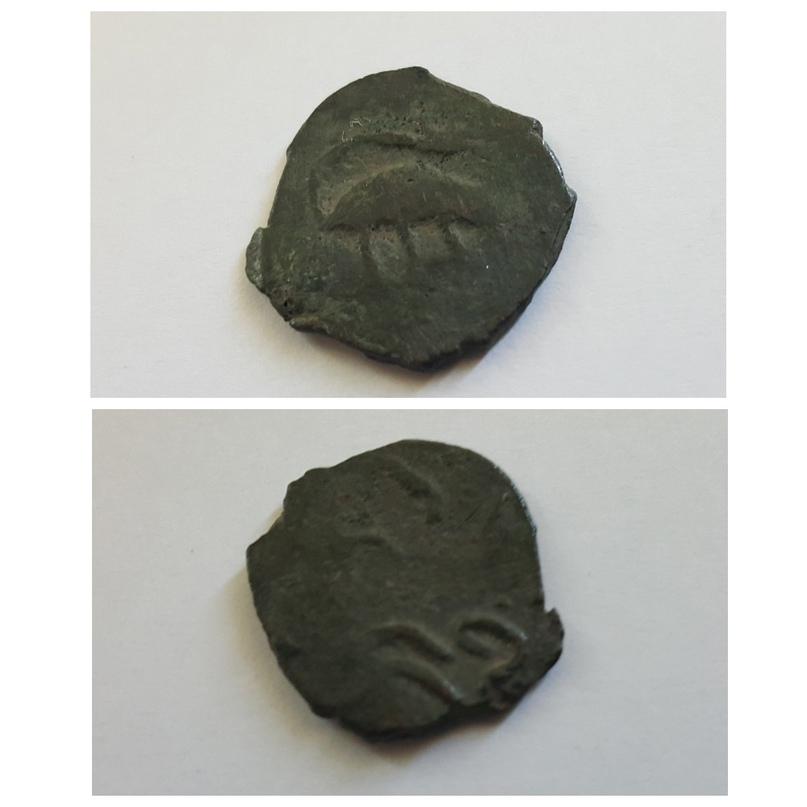 Монета с изображением зверька, направленного вправо. Из фондов Пензенского краеведческого музея.