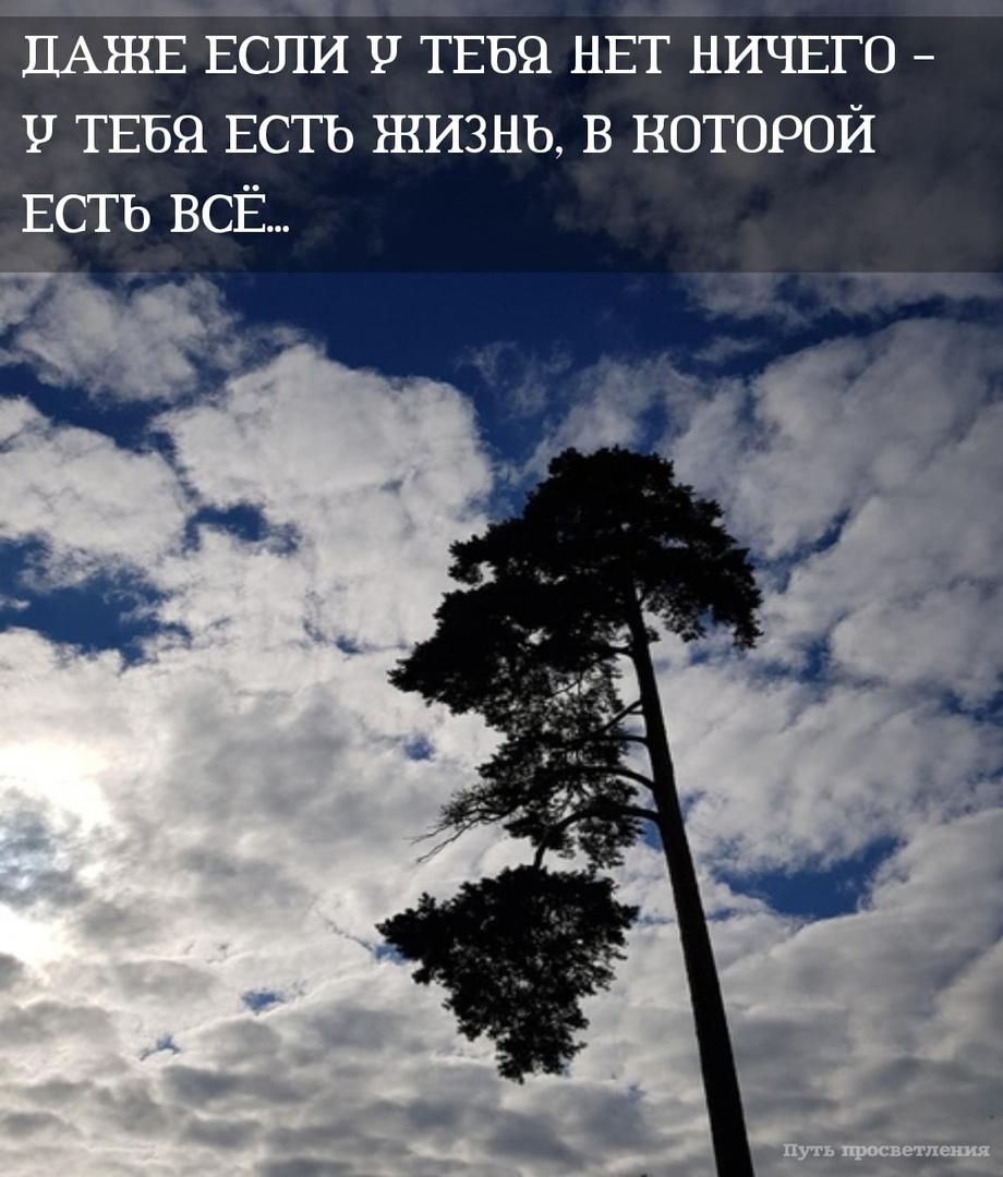 фото из альбома Анны Казаковой №14