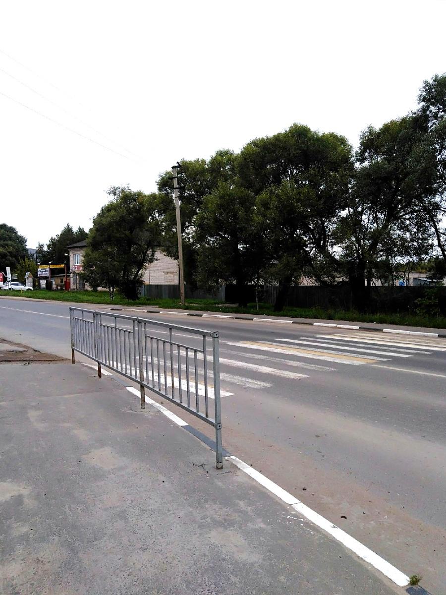 В Тверской области приходится перепрыгивать через ограждения, чтобы пройти к зебре