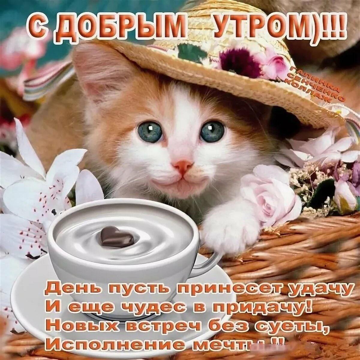 Алексей, 38, Cheboksary