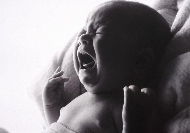 Младенцы с конвейера