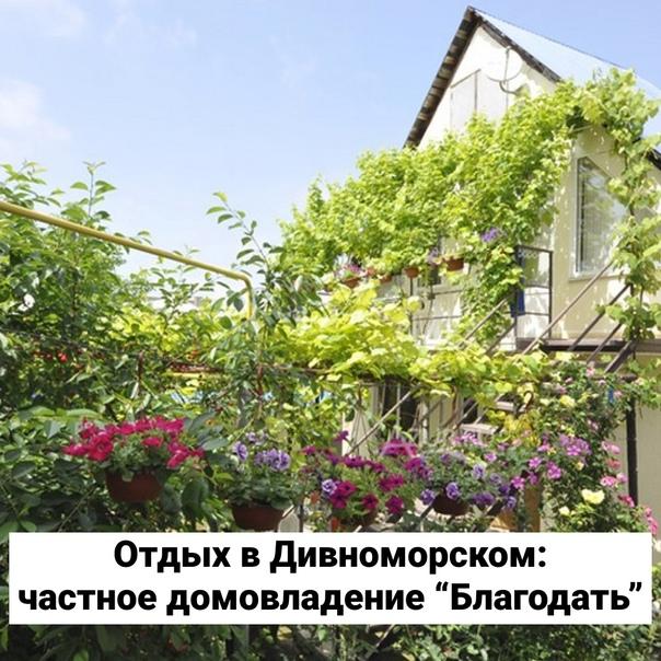 Ищете отдых в Дивноморском с удобным местоположени...