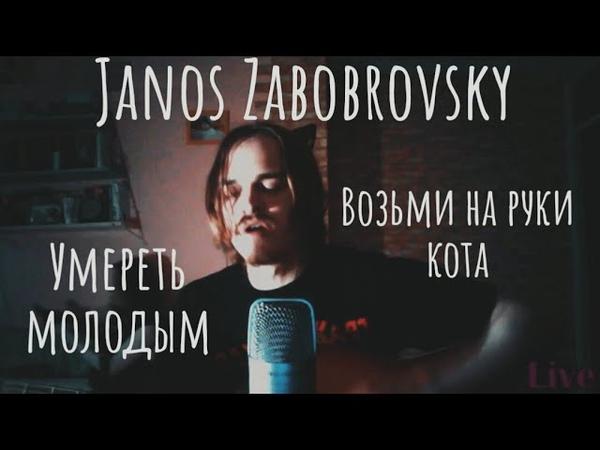 Умереть молодым Возьми на руки кота (Janos Zabobrovsky live 29.06.20) Янош Забобровский