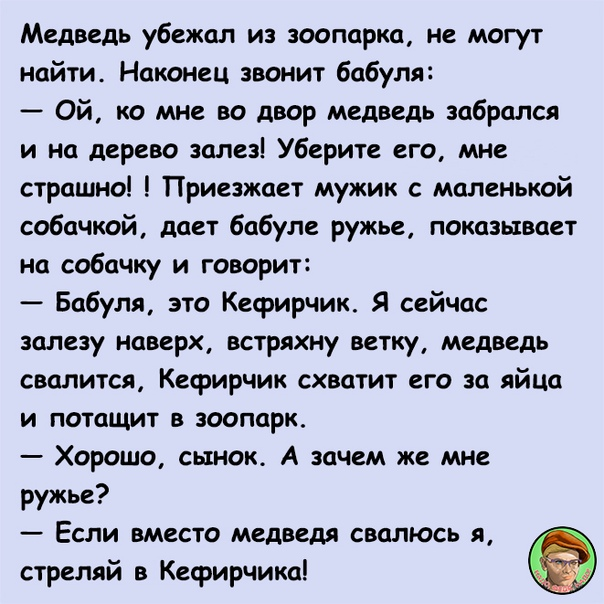 Анекдот Про Кефирчика И Медведя