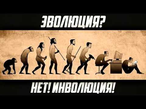 Инволюция гипотеза
