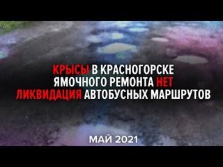 Новости за #Май2021. Крысы в Красногорске, ямочного ремонта нет, ликвидация автобусных маршрутов