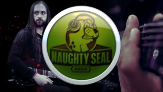 Naughty Seal Audio - Perfect Drums Plugin