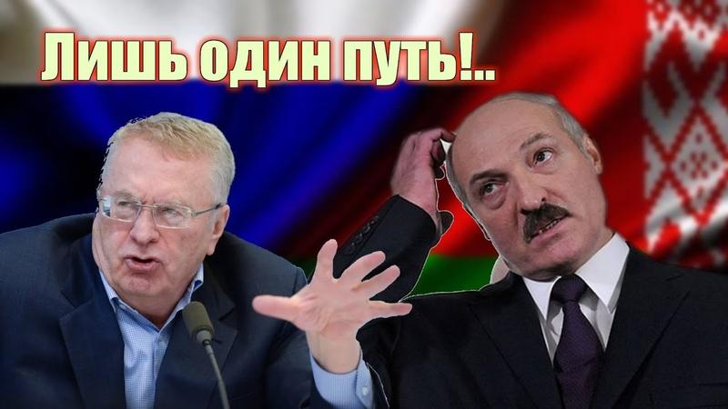 Жириновский назвал единственный путь Лукашенко