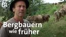 Standhafte Bergbauern: Bildband zeigt besondere Landwirtschaft im Allgäu | BR