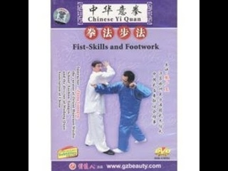 Fist Skills and Footwork / Yiquan Complete by Zhang Guang Yu